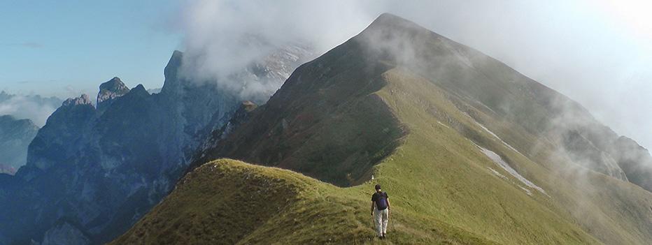 fondo speciale per le dolomiti e la montagna veneta, Fondo Speciale per le Dolomiti e la montagna veneta, Hospitality Team, Hospitality Team