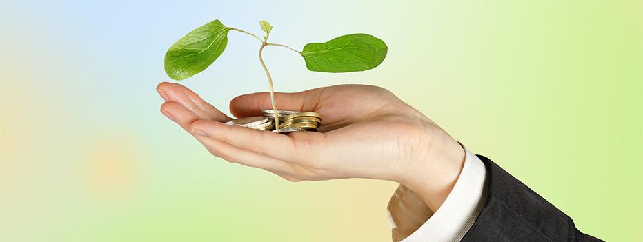 efficientamento energetico, 12 milioni di euro per l'efficienza energetica delle PMI in Veneto, Hospitality Team, Hospitality Team