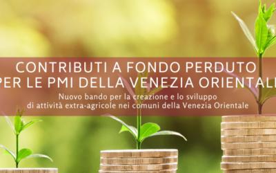 Contributo a fondo perduto fino al 40% per le imprese della Venezia Orientale